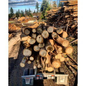 King County Firewood Yard 1